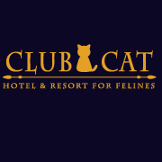 Club Cat Insta Profile Pic